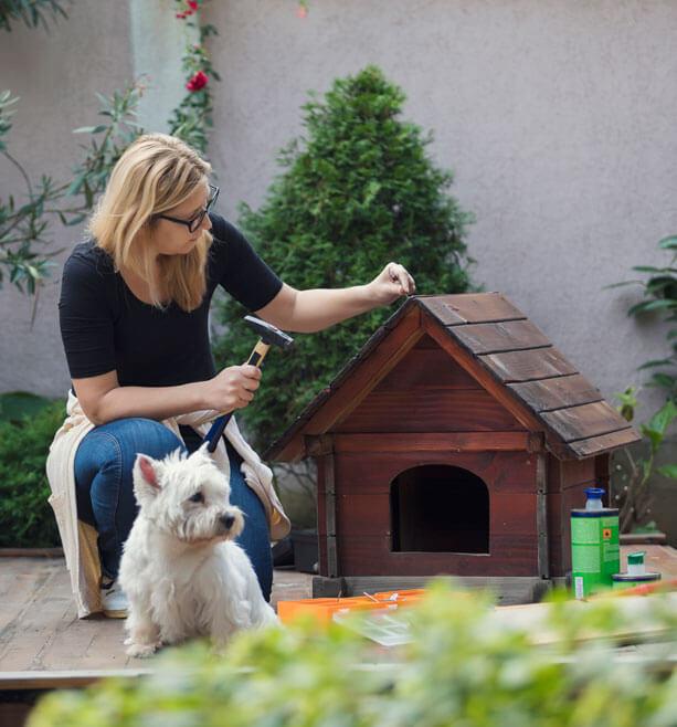 Cronstruir casa de mi mascota