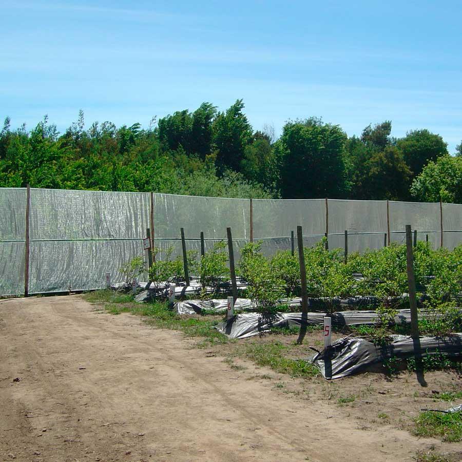 Alambre para Estructuras Agrícolas
